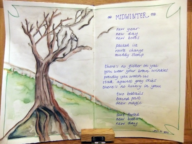 midwinter january 2011 journal entry