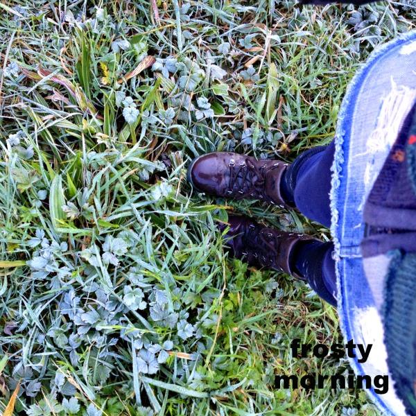 frosty grass underfoot
