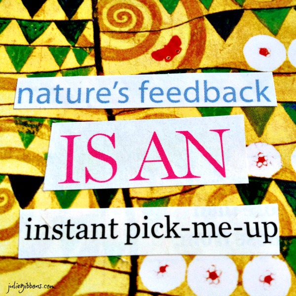 Nature's Feedback