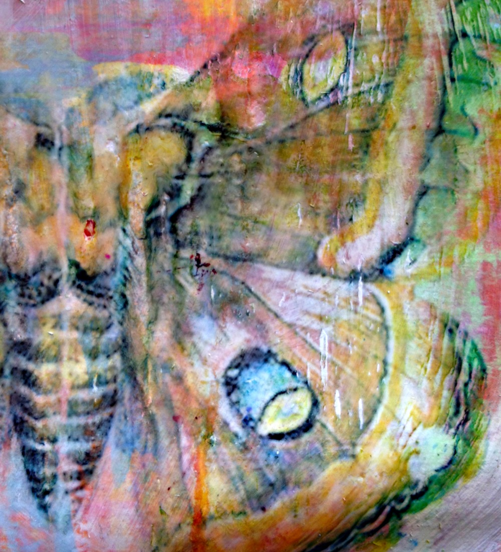Butterfly Detail | Julie Gibbons Creative Labyrinth David Bowie