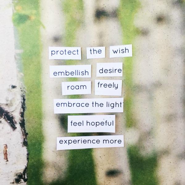 embellish desire