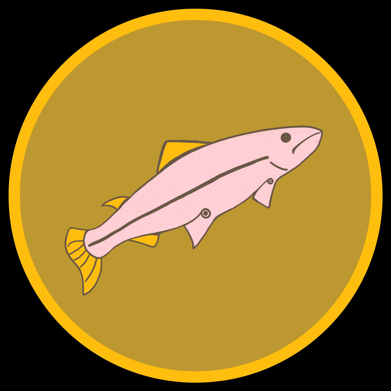 Clan Salmon